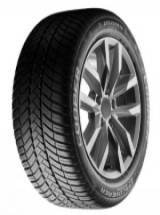 Cooper Discoverer All Season 225/55 R17 101W image